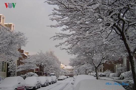 Đẹp nao lòng mùa đông ở Hà Lan - Ảnh 5.