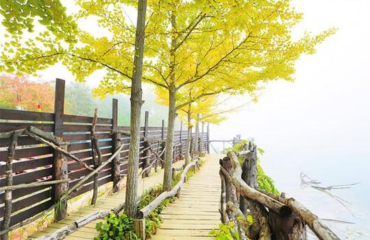 Mùa thu tại hòn đảo trong phim Bản tình ca mùa đông - Ảnh 5.