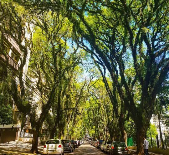 25 đường phố đẹp và đáng sống nhất thế giới - Ảnh 6.