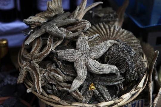 Bí ẩn trong khu chợ bùa ngải ma thuật lớn nhất thế giới - Ảnh 6.