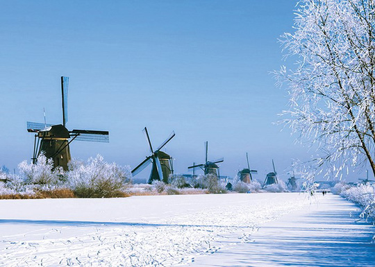 Đẹp nao lòng mùa đông ở Hà Lan - Ảnh 7.