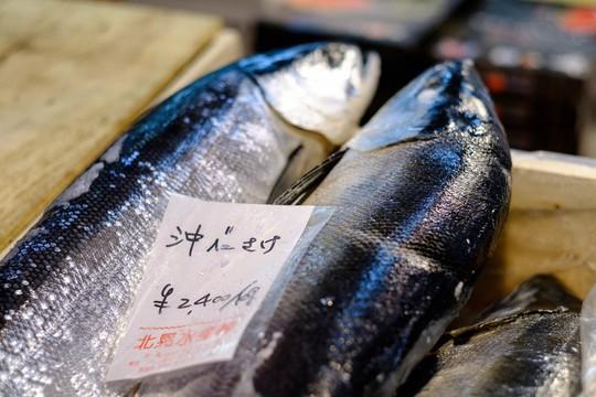 Chợ cá lớn nhất thế giới ở Nhật Bản - nơi bán những con cá triệu USD - Ảnh 7.