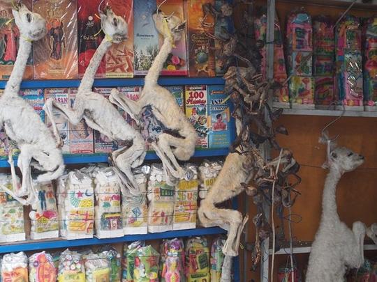 Bí ẩn trong khu chợ bùa ngải ma thuật lớn nhất thế giới - Ảnh 7.