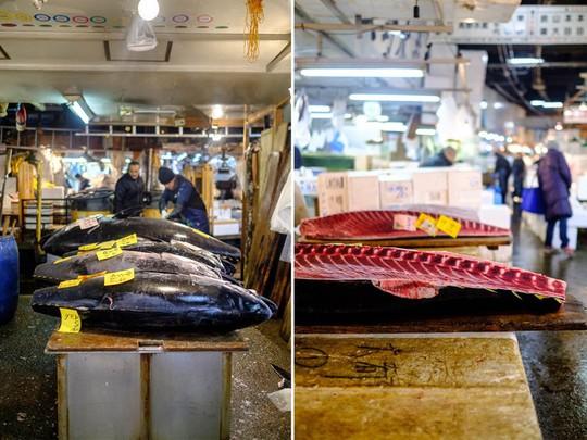 Chợ cá lớn nhất thế giới ở Nhật Bản - nơi bán những con cá triệu USD - Ảnh 8.