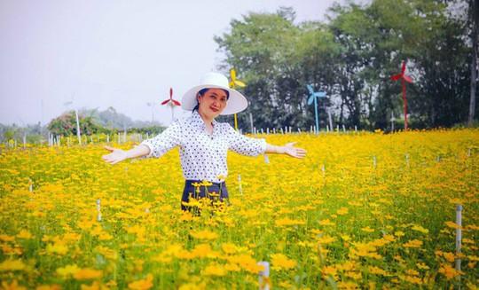 Không thể tin nổi giữa Sài Gòn có cánh đồng hoa đẹp đến thế! - Ảnh 8.