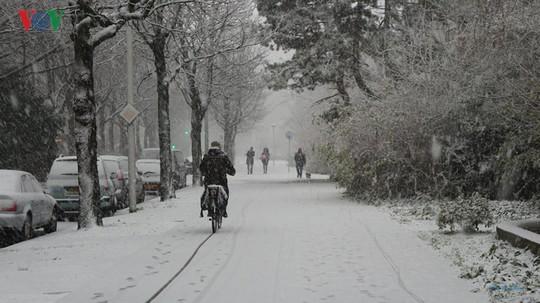 Đẹp nao lòng mùa đông ở Hà Lan - Ảnh 9.
