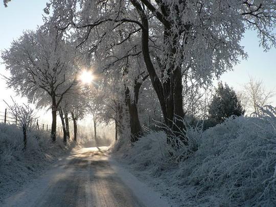 Đẹp nao lòng mùa đông ở Hà Lan - Ảnh 10.