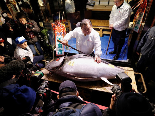 Chợ cá lớn nhất thế giới ở Nhật Bản - nơi bán những con cá triệu USD - Ảnh 10.