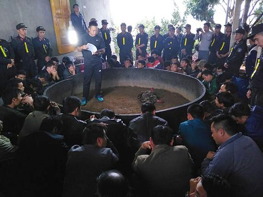 Hơn 100 cảnh sát đột kích sới đá gà, bắt giữ 52 con bạc - Ảnh 1.