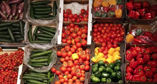 Nhà đầu tư hứng thú hơn với nông nghiệp hữu cơ - Ảnh 1.