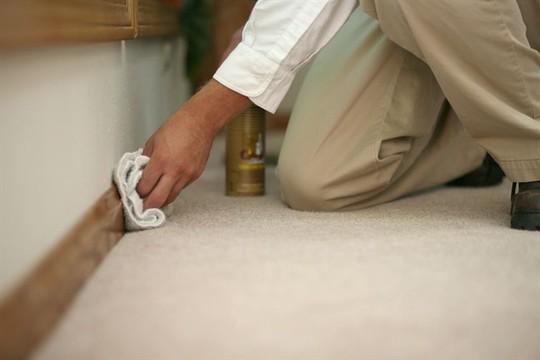 Cảnh báo 5 ổ vi khuẩn thường bị bỏ quên khi vệ sinh nhà - Ảnh 2.