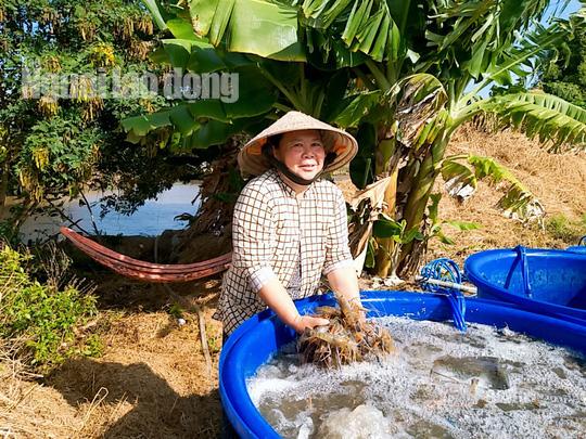 Cận Tết, về Cà Mau xem người dân quậy bùn bắt tôm càng xanh - Ảnh 11.