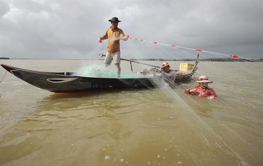 Từng đàn cá đối từ biển ngược vào cửa sông An Hòa - Ảnh 6.