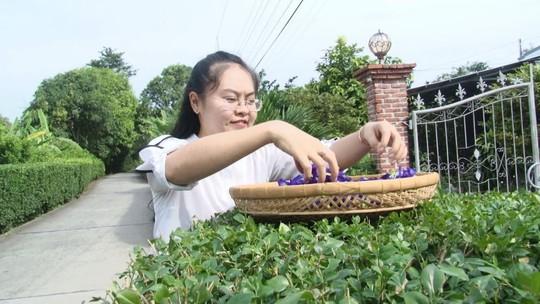 Cô giáo 9X làm trà từ hàng ngàn loại hoa ở Sa Đéc - Ảnh 1.