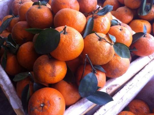 Phân biệt trái cây ngậm hóa chất tránh mua nhầm dịp Tết - Ảnh 1.