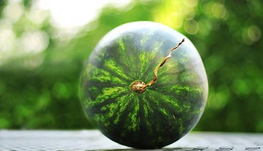 Phân biệt trái cây ngậm hóa chất tránh mua nhầm dịp Tết - Ảnh 11.