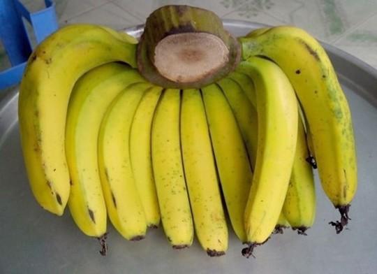Phân biệt trái cây ngậm hóa chất tránh mua nhầm dịp Tết - Ảnh 3.