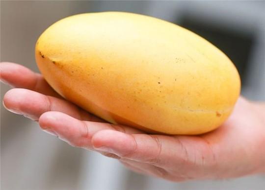 Phân biệt trái cây ngậm hóa chất tránh mua nhầm dịp Tết - Ảnh 5.