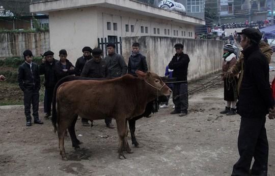 Độc đáo chợ phiên Đồng Văn ngày cuối tuần - Ảnh 11.