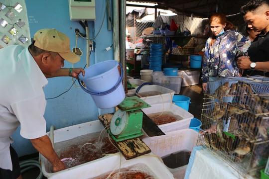 Mua cá Koi vài trăm ngàn đồng/con đưa tiễn ông Táo - Ảnh 8.