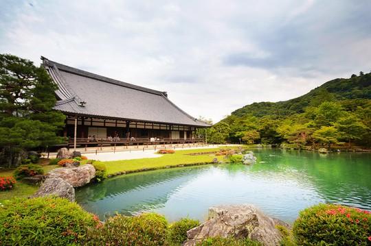 'Cảm giác lạ' thu hút hàng chục triệu khách đến rừng tre ở Nhật mỗi năm - Ảnh 6.