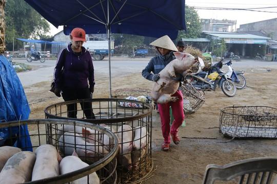 Nghề độc ở chợ heo lớn nhất Quảng Nam - Ảnh 29.