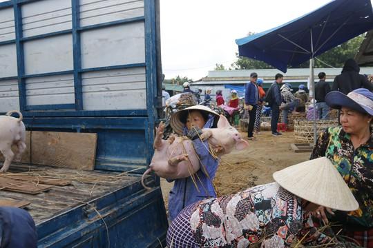 Nghề độc ở chợ heo lớn nhất Quảng Nam - Ảnh 35.