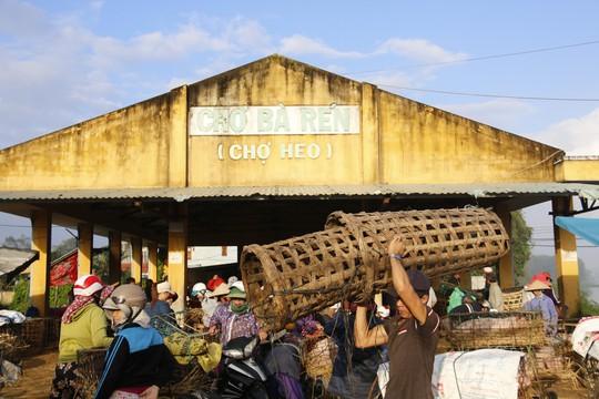 Nghề độc ở chợ heo lớn nhất Quảng Nam - Ảnh 5.