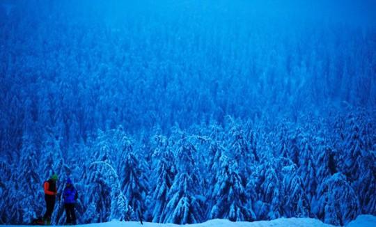 Những khung cảnh mùa đông tuyết phủ trắng xóa đẹp như cổ tích - Ảnh 1.
