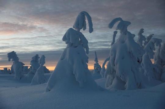 Những khung cảnh mùa đông tuyết phủ trắng xóa đẹp như cổ tích - Ảnh 8.