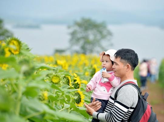 Mãn nhãn ngắm cánh đồng triệu bông hoa hướng dương bung nở ở Nghệ An - Ảnh 4.