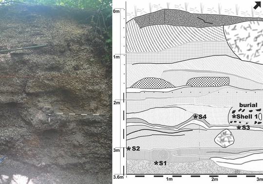 Cô gái bí ẩn nằm giữa vỏ sò trong mộ cổ 5.900 năm - Ảnh 3.