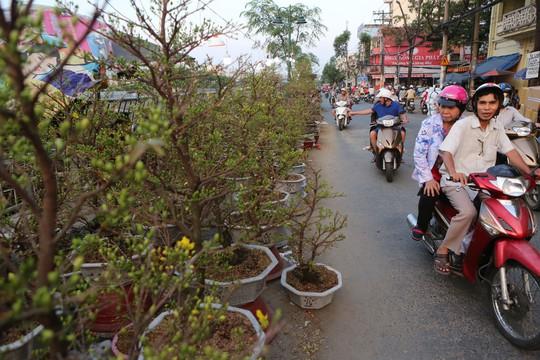 Chợ hoa Tết Bến Bình Đông ngày càng đìu hiu dù cận Tết - Ảnh 7.