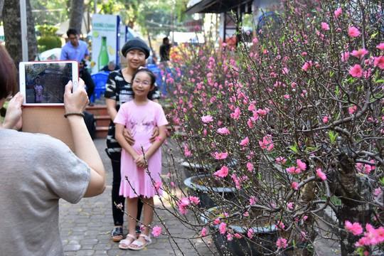 Chợ hoa Tết Bến Bình Đông ngày càng đìu hiu dù cận Tết - Ảnh 10.