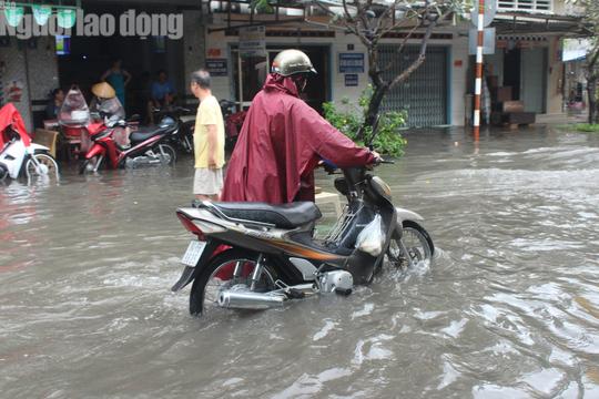 Bạc Liêu, Cà Mau ngập kỷ lục do ảnh hưởng bão số 1 - Ảnh 4.