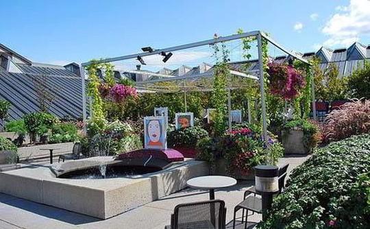 Những thiết kế vườn trên sân thượng đẹp mát mắt - Ảnh 11.