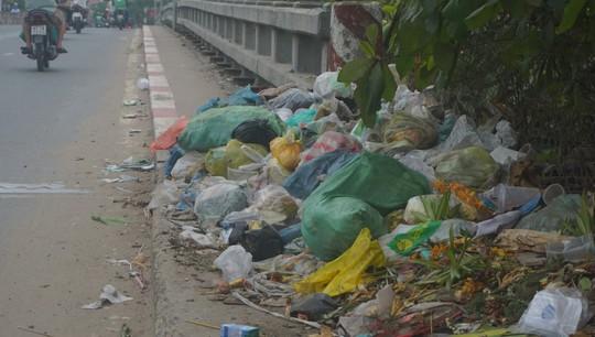Rác thải chất đống ở chân cầu - Ảnh 1.