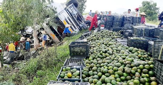 Thấy xe tải chở cam lật, hàng chục người dân giúp tài xế thu gom - Ảnh 1.