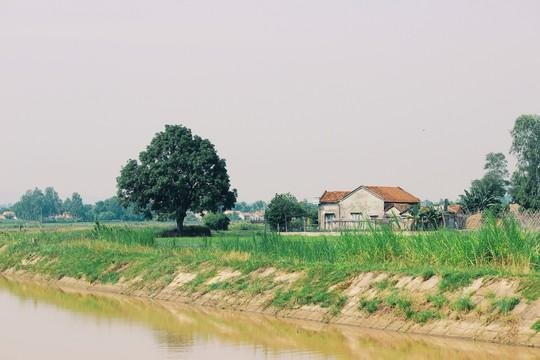 Đập Đồng Cam - báu vật của xứ hoa vàng trên cỏ xanh - Ảnh 7.