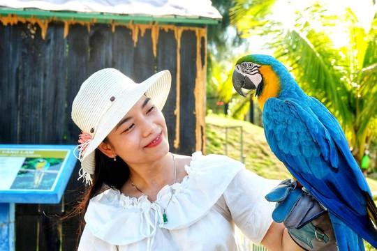 Khám phá FLC Zoo Safari Park – vườn thú độc đáo tại Quy Nhơn - Ảnh 11.