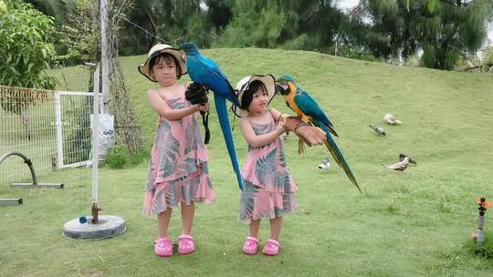 Khám phá FLC Zoo Safari Park – vườn thú độc đáo tại Quy Nhơn - Ảnh 3.