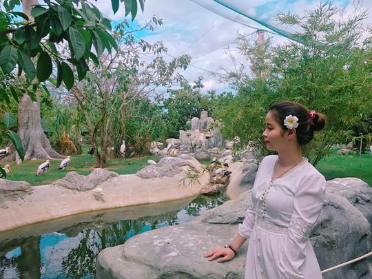 Khám phá FLC Zoo Safari Park – vườn thú độc đáo tại Quy Nhơn - Ảnh 8.