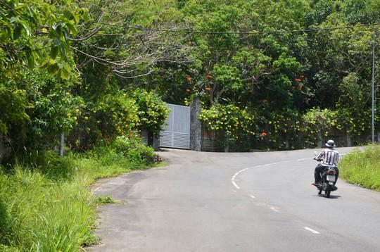 Giao đất trái quy định tại bán đảo Sơn Trà - Ảnh 1.