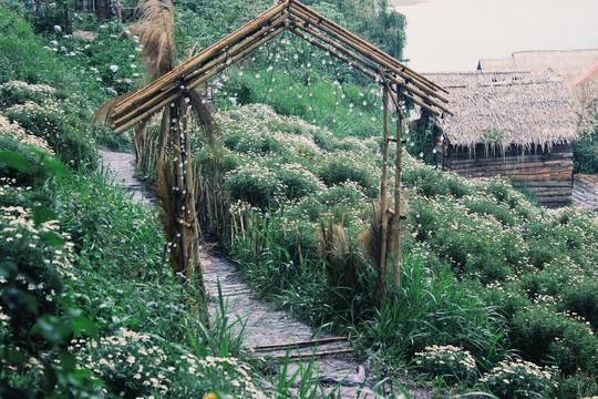 Vườn cổ tích giữa lòng Đà Lạt - Ảnh 7.