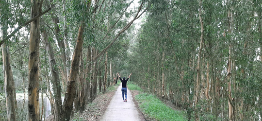 Một ngày ở rừng tràm Trà Sư mùa nước nổi - Ảnh 1.