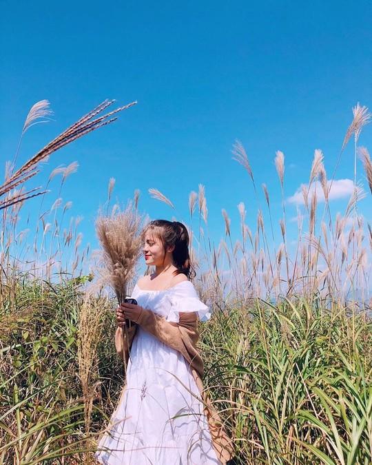 Giới trẻ khoe ảnh với đồng cỏ lau trắng dịp cuối thu ở Bình Liêu - Ảnh 3.