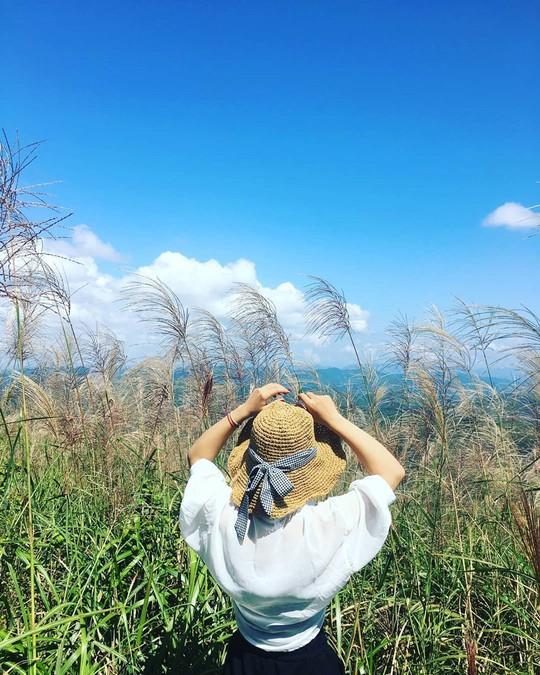 Giới trẻ khoe ảnh với đồng cỏ lau trắng dịp cuối thu ở Bình Liêu - Ảnh 4.