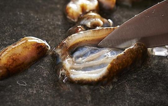 Cách ăn sống đỉa biển trứ danh của người Hàn Quốc - Ảnh 5.