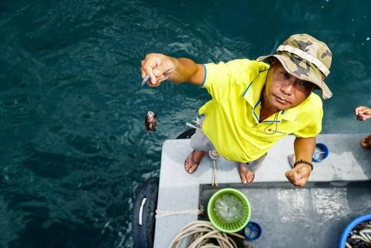 Câu cá, lặn biển ngắm san hô ở Phú Quốc - Ảnh 1.