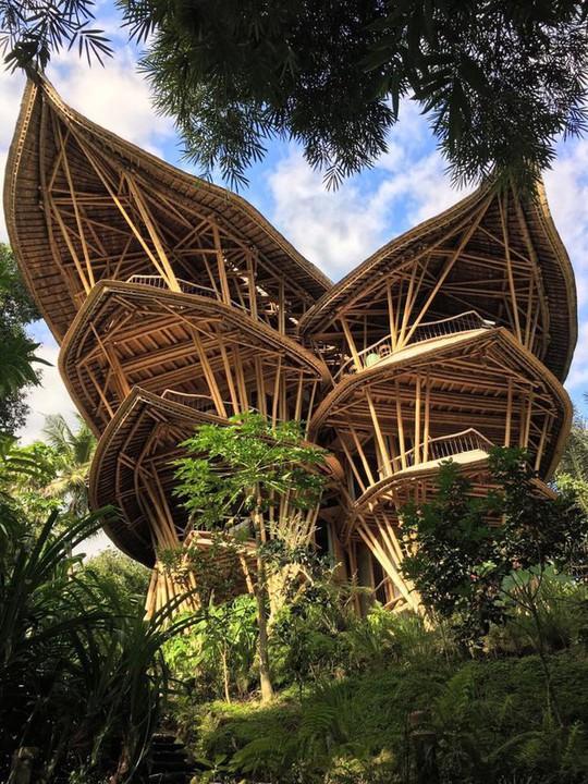 """Ngỡ ngàng """"biệt thự tre"""" 6 tầng tuyệt đẹp giữa rừng - Ảnh 2."""